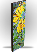 Related Product - Rudbeckia