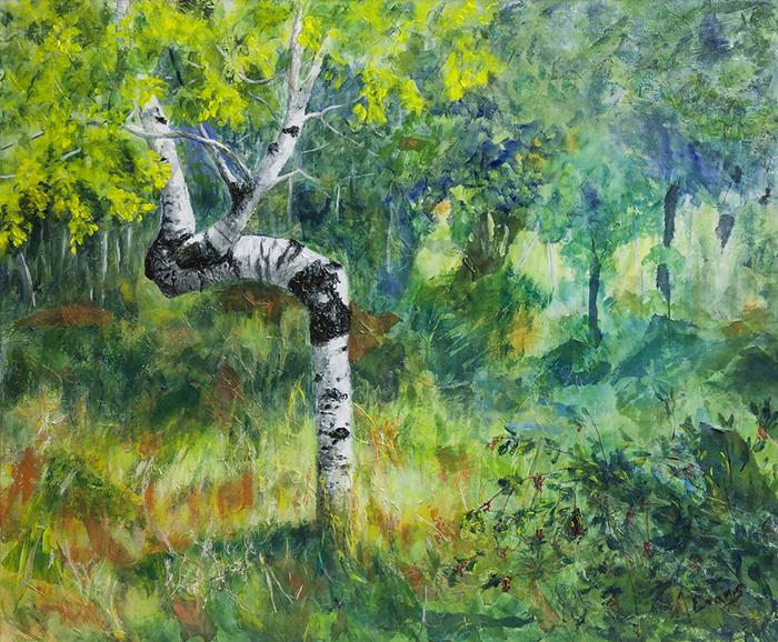 Saskatchewan NAC | Artist of the Month - Jane A  Evans